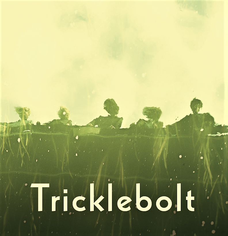 album cover TRICKLEBOLT-same MM009