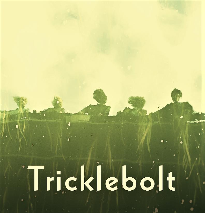 album cover TRICKLEBOLT-same MM009